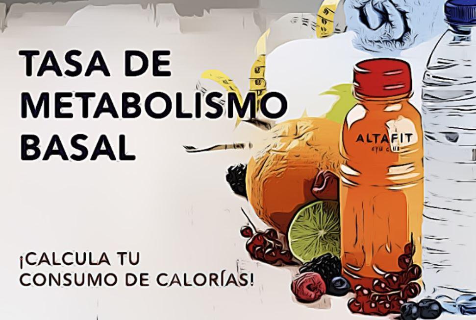 calculadora de metabolismo basal